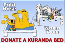 donate a Kuranda bed