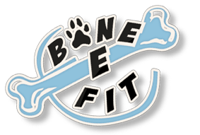 Bone-E-Fit 2018 Logo
